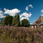 Foto: Schafstall Lüneburger Heide